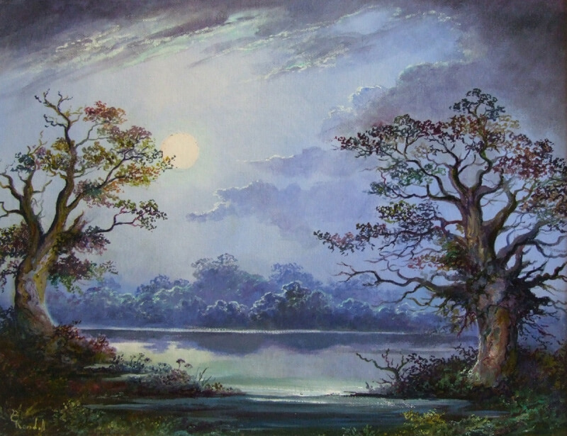 bruce_kendall_yorkshire_wetlands_by_moonlight_bk189_800
