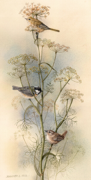 Jennifer Bell wildlife artist art print of birds at Myton Gallery