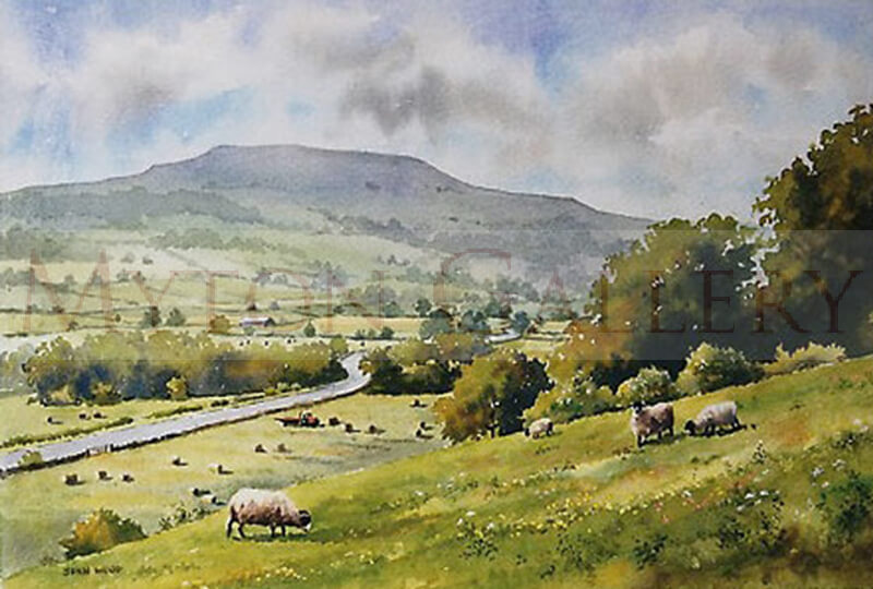 Pen Hill, North Yorkshire picture by artist John Wood