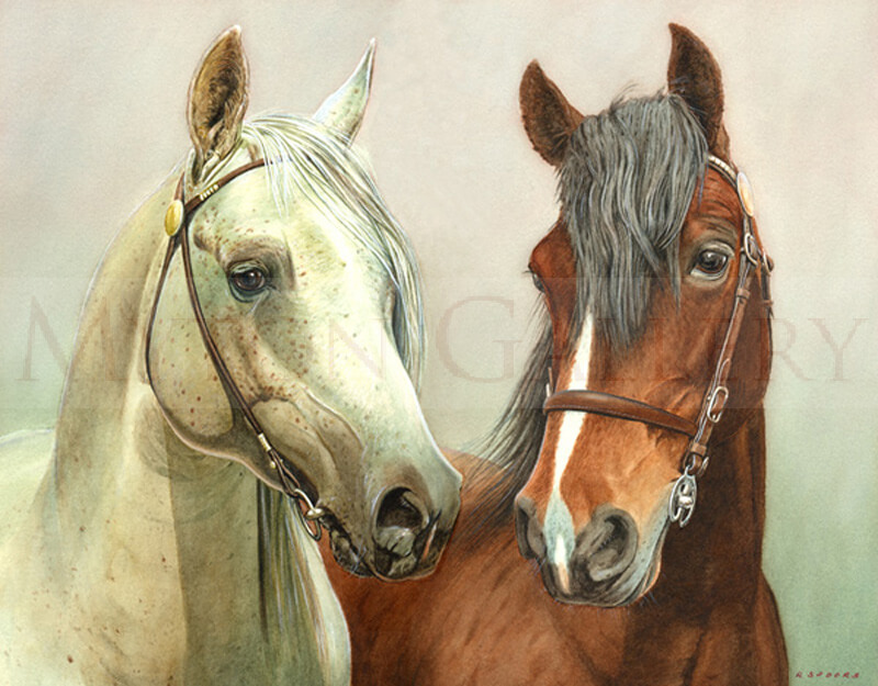 Two Horses Portrait picture by artist Ron Spoors