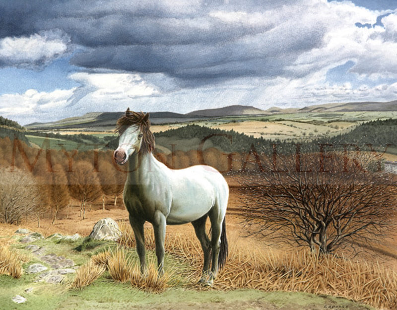Horse in a Landscape picture by equine artist Ron Spoors